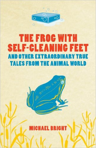 frogwithselfcleaningfeet